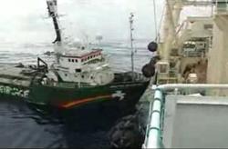 greenpeace-ship.jpg
